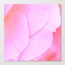 Flower | Flowers | Floral | Pink Rose Petals | Nadia Bonello Canvas Print
