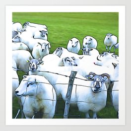 Sheepish Art Print