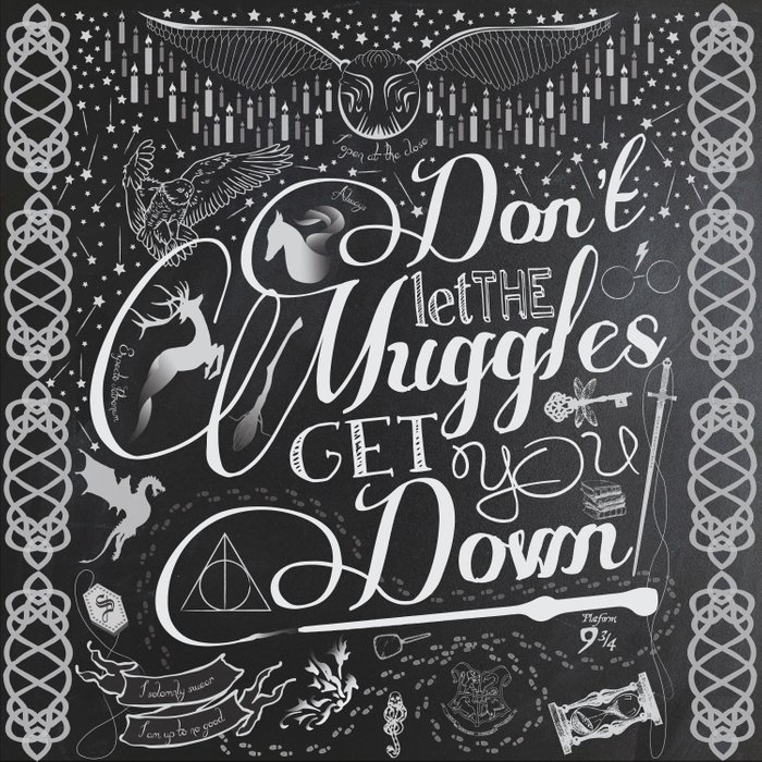 Don't let the Muggles Get You Down Comforters