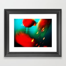 fishes fishes...:) Framed Art Print