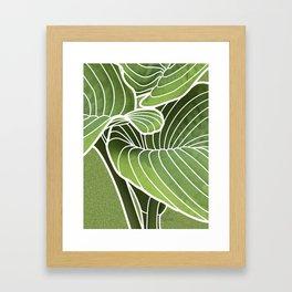 Hosta Detail Framed Art Print