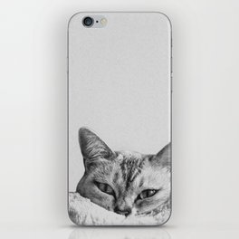 Minimalist grey cat iPhone Skin