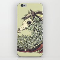 horse iPhone & iPod Skins featuring Beautiful Horse Old by dvdesign