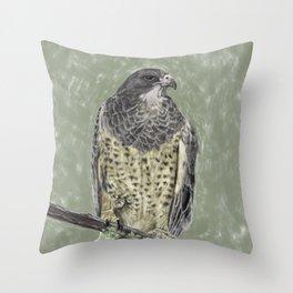 Black-chested buzzard-eagle (Geranoaetus melanoleucus) Throw Pillow