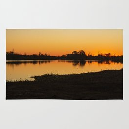 Silhouettes of trees at sunset in the field. Reflections on the lake at sundown. Rug