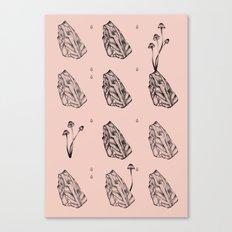 Pink mushrooms, rock and rain Canvas Print