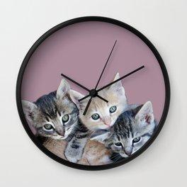 Kittens, 3 balls of tenderness Wall Clock
