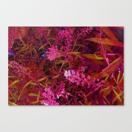 Clipped 2 Canvas Print