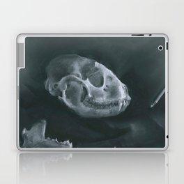 Racoon Skull Laptop & iPad Skin