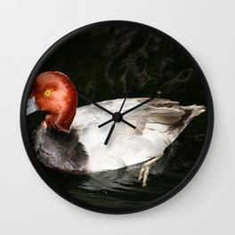 Male Redhead Duck Wall Clock