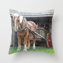 Stacking for Winter Throw Pillow