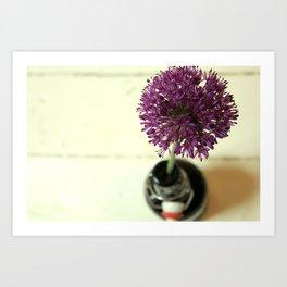 Allium Love Art Print