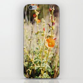 Desert Flowers iPhone Skin