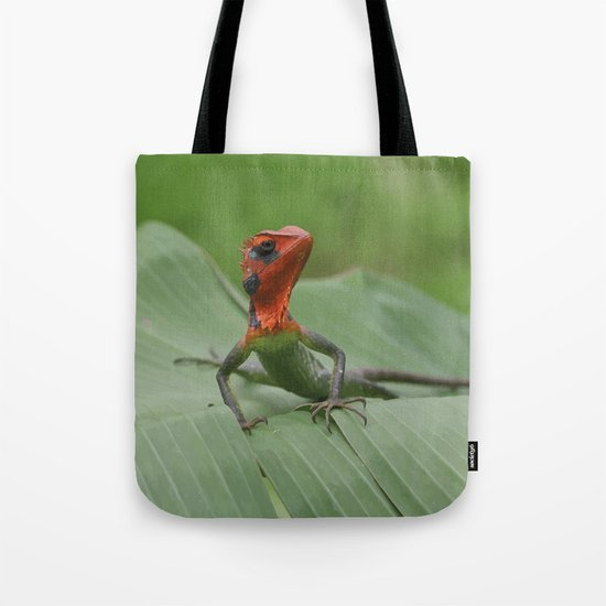 Gecko iguana Red Head by move-art