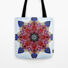 Red and blue classic trucks kaleidoscope Tote Bag