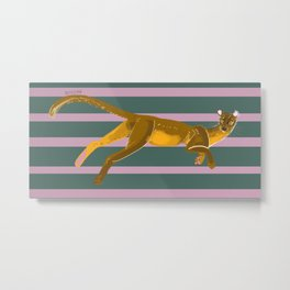 Fossa with color lines Metal Print