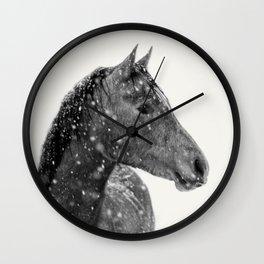 Horse Animal Photography Wall Clock