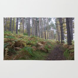 Forest and ferns Rug