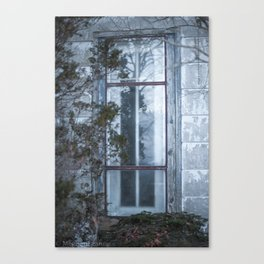 In Through The Window Canvas Print