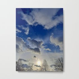 Birds Fly South in the Winter Metal Print