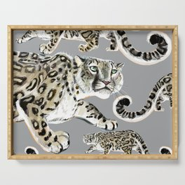 Snow leopard in grey Serving Tray