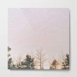 Sunset of the Frigid Trees Metal Print