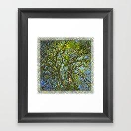 JACK'S MAPLE Framed Art Print