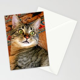 I'm Ready For My Close-up... Stationery Cards