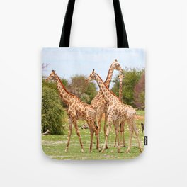 Giraffe family, Africa wildlife Tote Bag