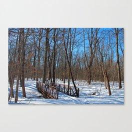 Winter Fatigue Canvas Print