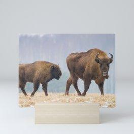 Cow and a calf Mini Art Print