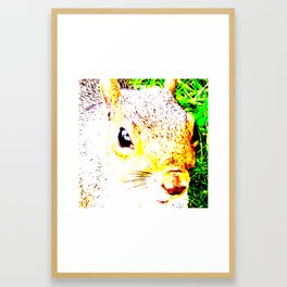 The many faces of Squirrel 1 Framed Art Print