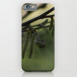 Concept nature : Hazel alder buds iPhone Case