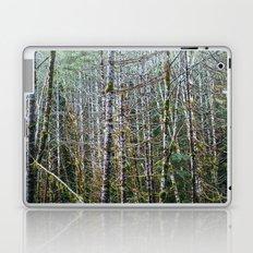 Trees: I // Oregon Laptop & iPad Skin