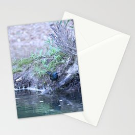 Black Bird At Water's Edge Stationery Cards