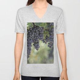 black grape grows on vineyard Unisex V-Neck