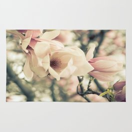 Magnolia Tree Bloom.  Flower Photography Rug