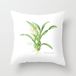 Butterfly Orchid Throw Pillow