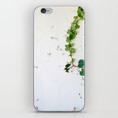 Simple Vines- Botanic iPhone & iPod Skin