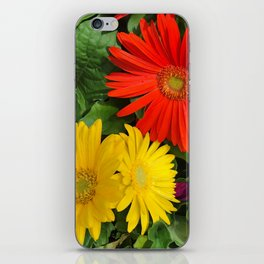 Colorful Daisies iPhone Skin