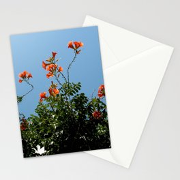 Naxos florals Stationery Cards