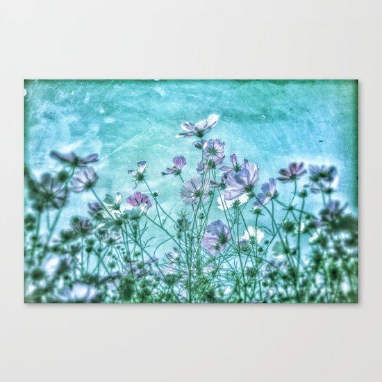 Cosmea Ocean Heaven Canvas Print