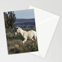 Pallaton Stationery Cards