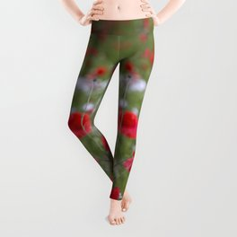 Spring Meadow Poppy Flowers full Bloom Leggings