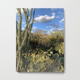 Desert Springtime Metal Print
