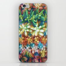 Succulent Garden iPhone & iPod Skin