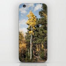 Skinny Aspen iPhone & iPod Skin