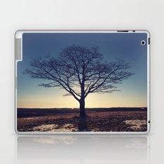 Backlit in Moonlight Laptop & iPad Skin