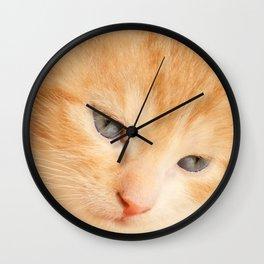 Kitten red Wall Clock