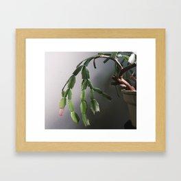 Zimmerpflanze Framed Art Print